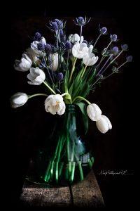 fiori-1