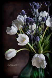 fiori-1-3
